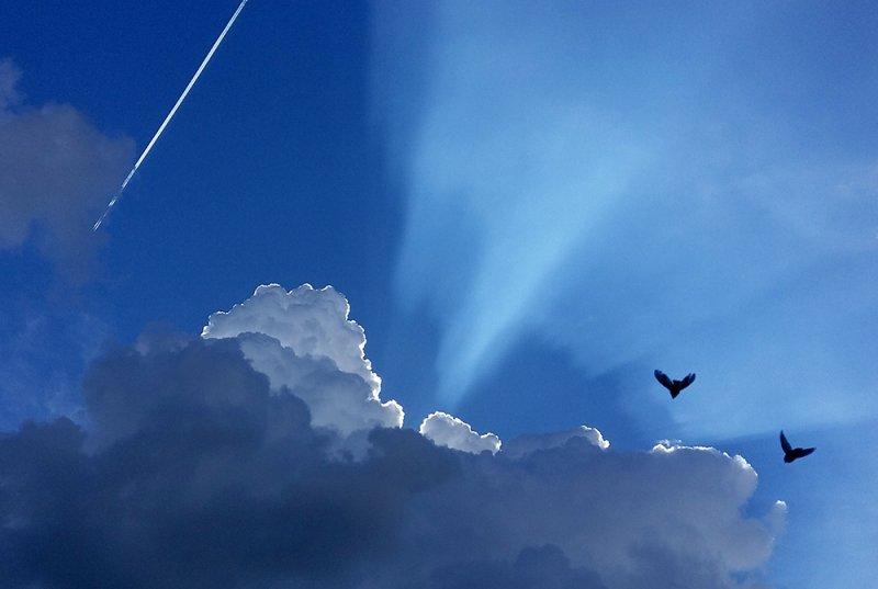 08_HelenWitte_lucht-zomer-2020Small