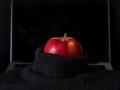 04_petervaneekelen_Apple