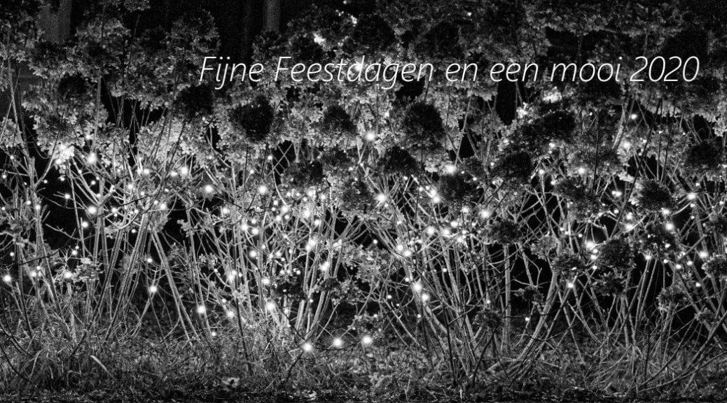 Fotograaf: Joke van Vliet