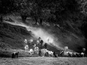 fotograaf: Nathalie Kremers