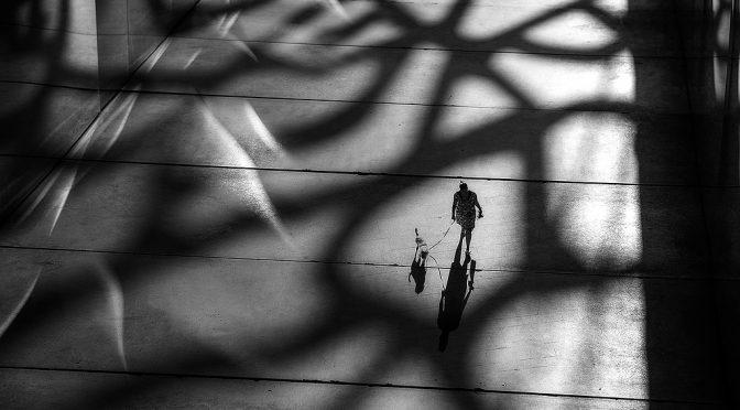 fotograaf: Marcel van Balken